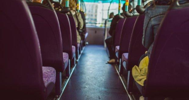 TAS Trans P2P buses