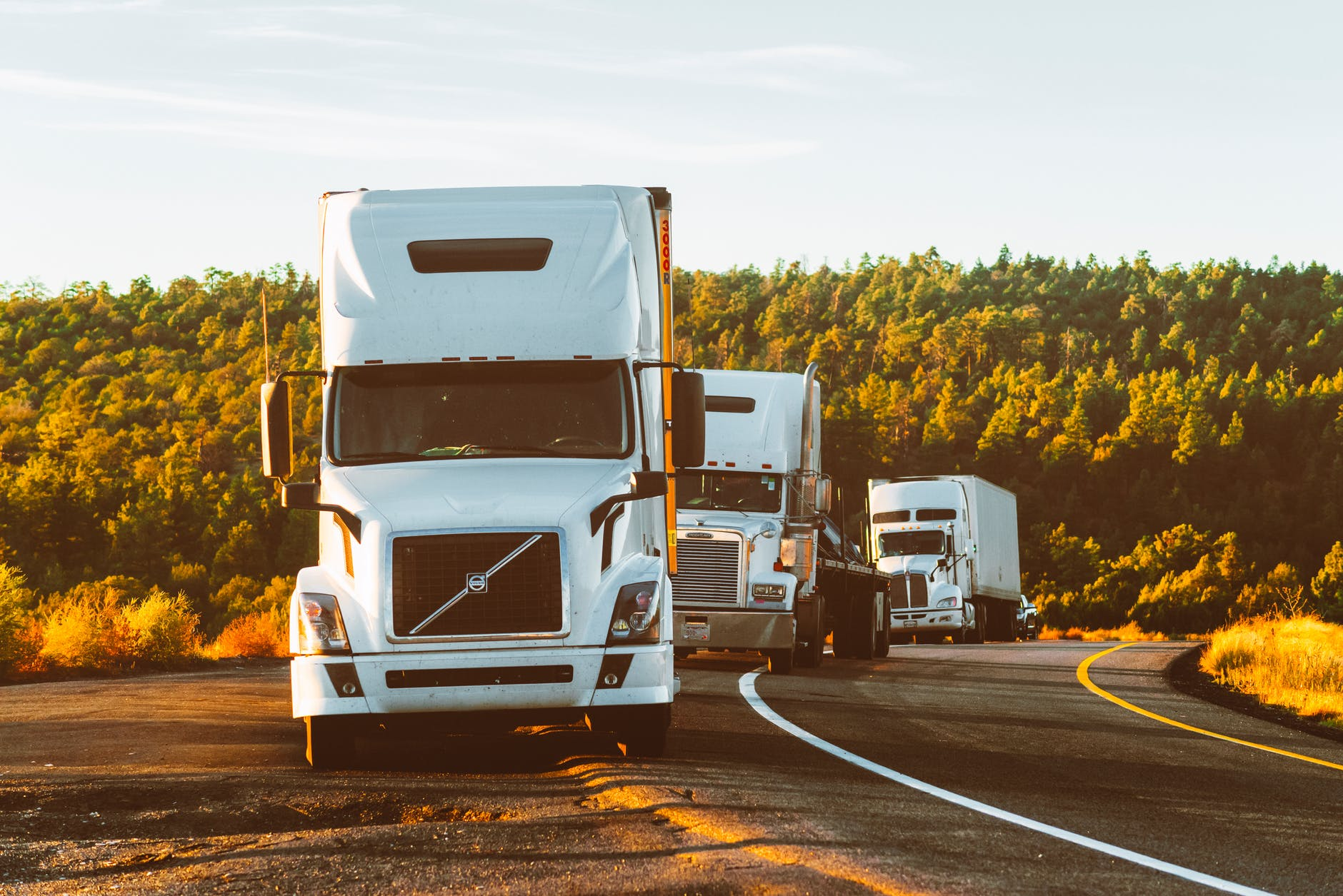 Truckload vs. LTL Freight: What's the Difference? What Are the Advantages of Freight Forwarders in International Trade Overloading a Truck