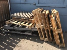 Pallets-Executive Chronicles