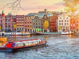 Calling All History Buffs: A Guide to Amsterdam