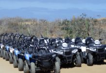 What Are The Differences Between A Buggy & An ATV
