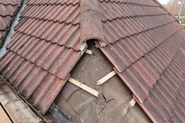Importance of Immediate Roof Repair and Maintenance