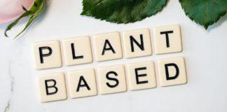 Animal vs. Plant Based Proteins