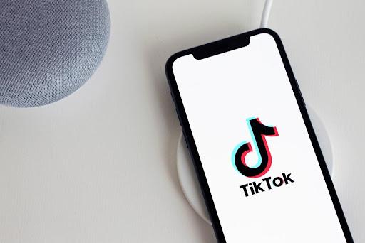 How to Dominate the TikTok Algorithm