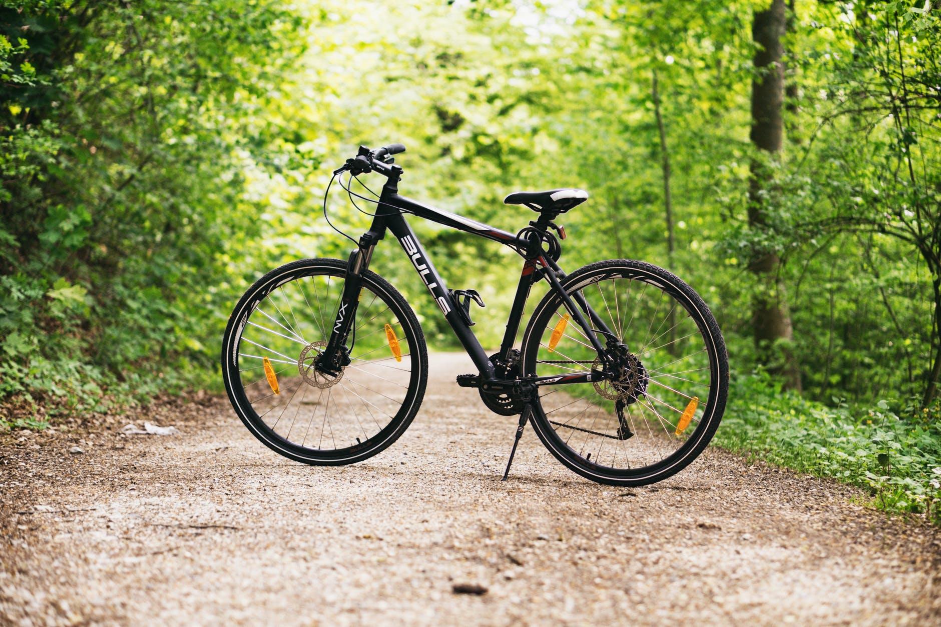 The 5 Best Exercise Bikes for Seniors