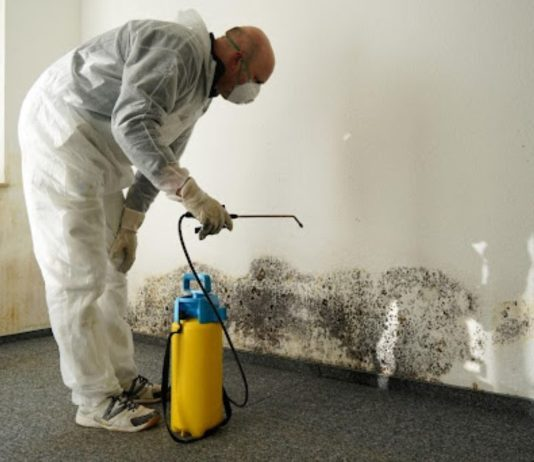 How to Get Rid of Household Hazardous Waste the Right Way