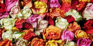 The Benefits of Using Wooden Flowers For Your Wedding