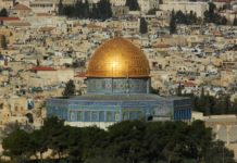 Israel Investment: 5 Tips for Getting Started