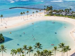 3 Unique Ways to Remember Your Hawaii Vacation